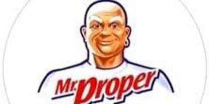 Picture of Mr. Proper